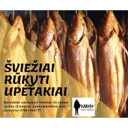 RŪKYTAS UPĖTAKIS